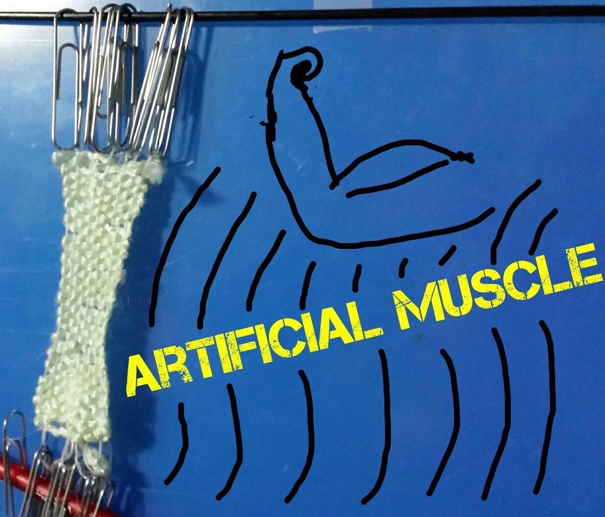 Picture of DIY Artificial Muscle