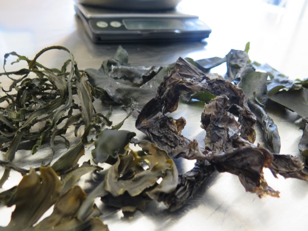 Picture of Seaweed Kimchi