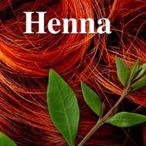 Color With Henna - a Dog and Green Living Approved Instructable