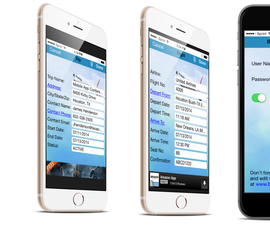 How to make your dream iPhone app a reality (no programming required)