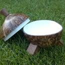 Coconut Shell Bowl