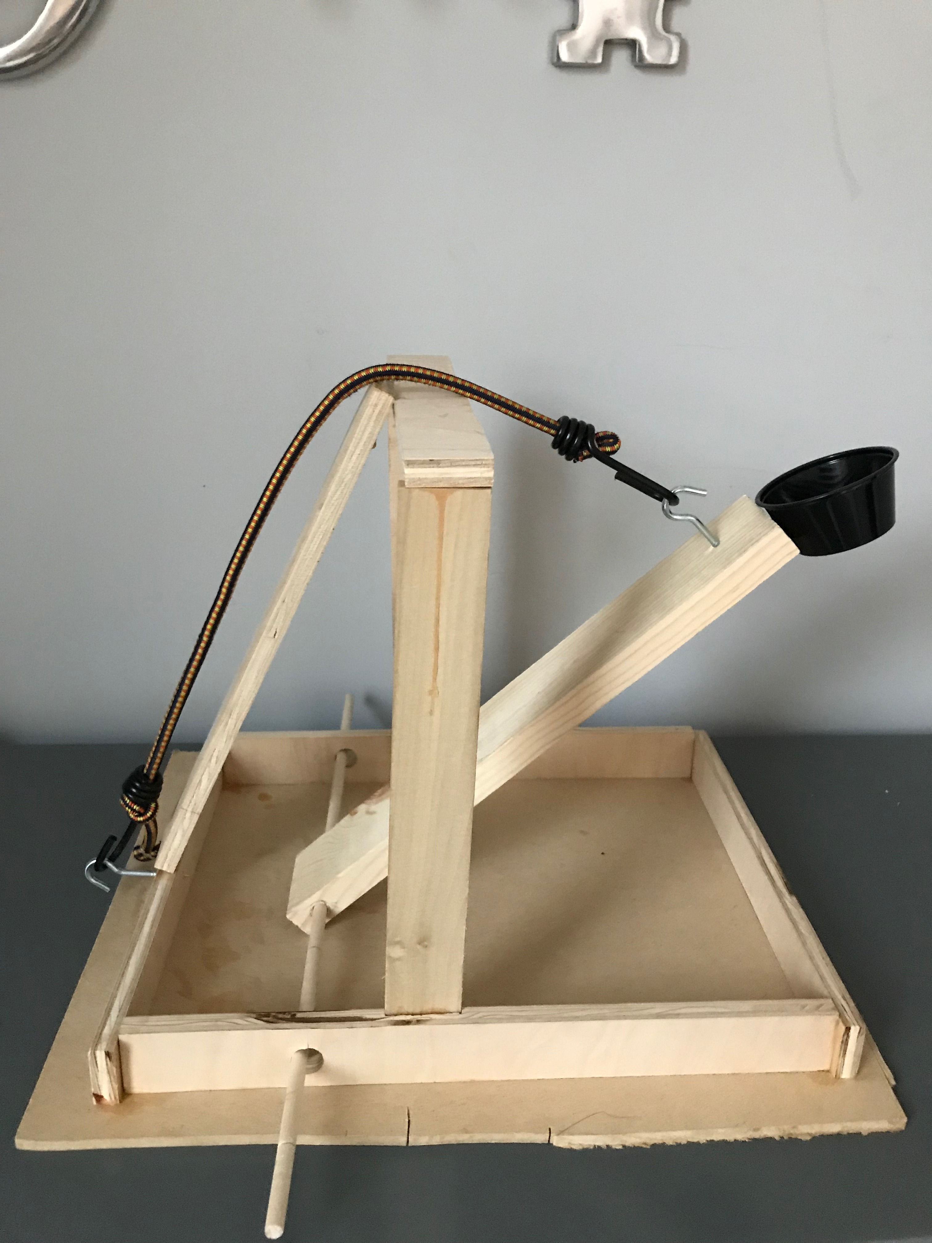 Picture of Easy DIY Catapult