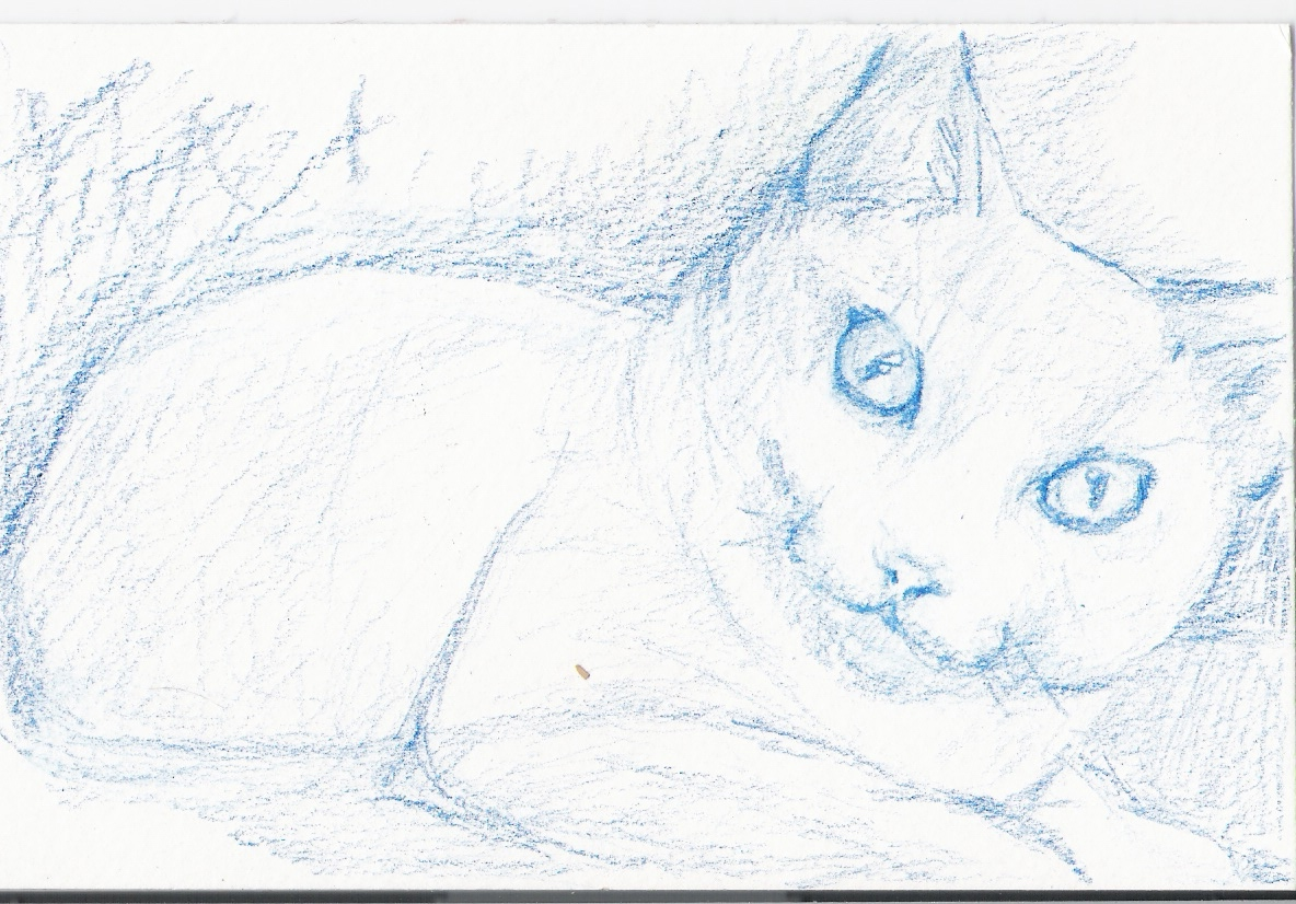 Picture of Sketch Out Your Composition