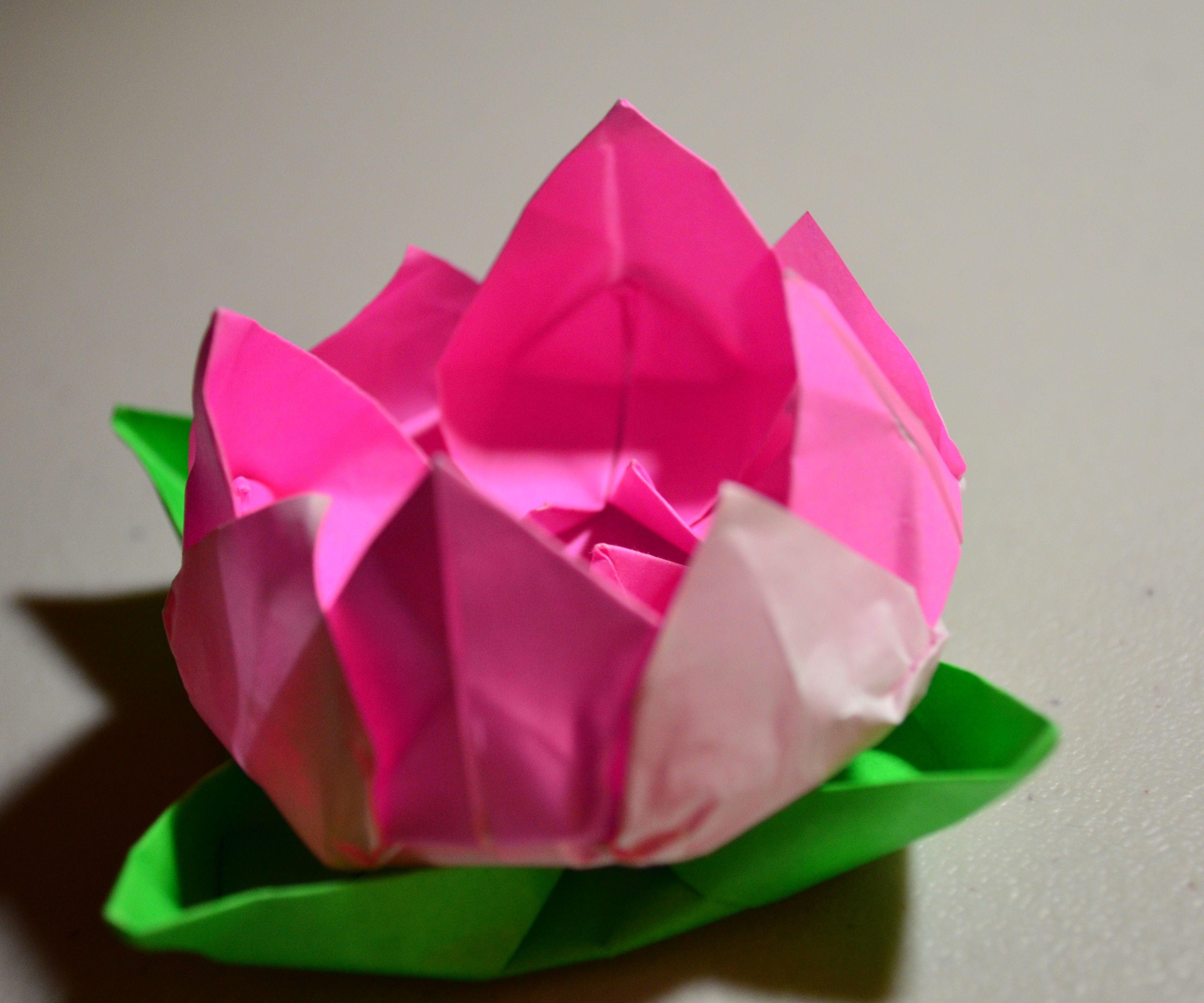 Modular Origami Lotus Flower with 8 Petals - Tutorial - Paper Kawaii | 3264x3920