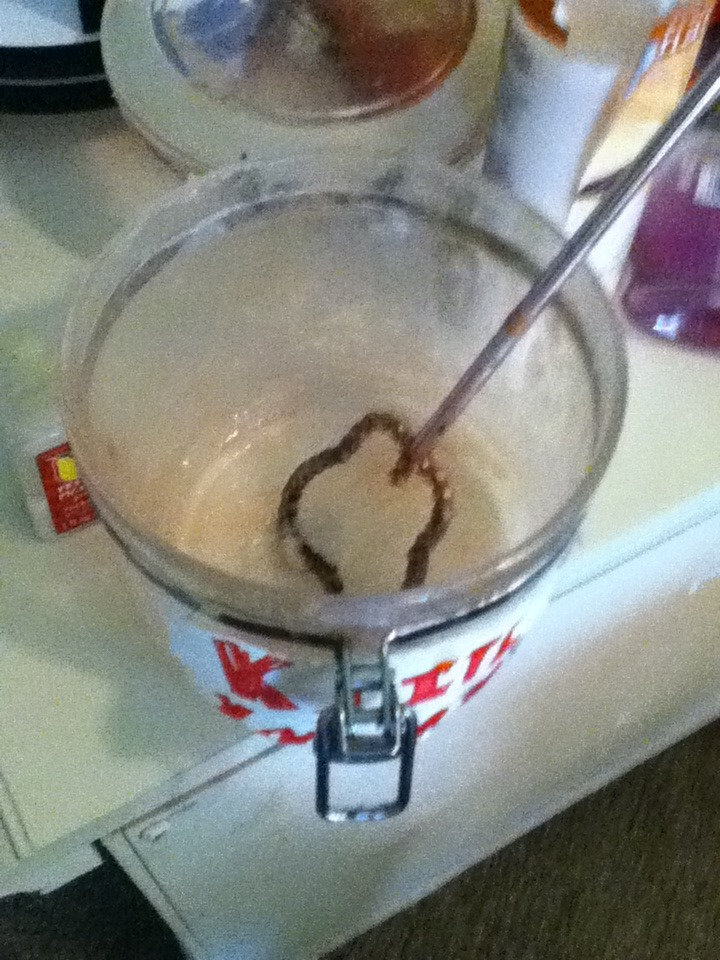 Picture of Homemade Lotion