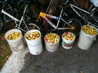 Containers for Apples