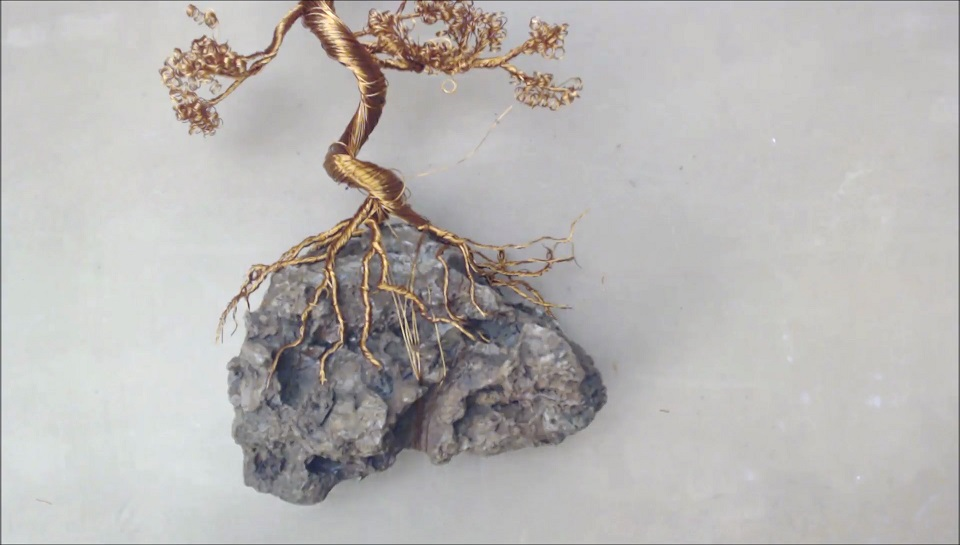 Picture of Fix Tree on Rock