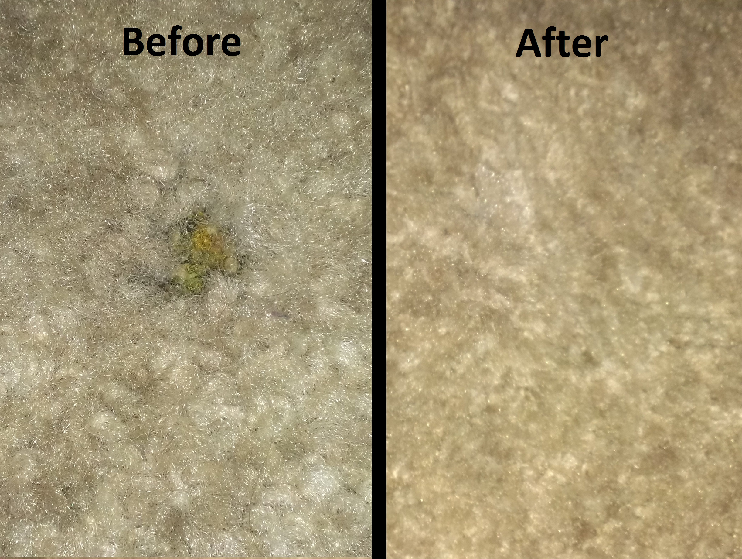 Picture of Making Small Stains / Burns / Holes in Carpet As If They Never Happened