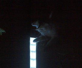 An Awesome LED PVC Pipe Light