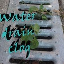 Clogged water drain