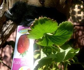 Sew A Grow-Bag or Upside Down Planter Bag