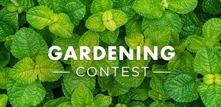 Gardening Contest