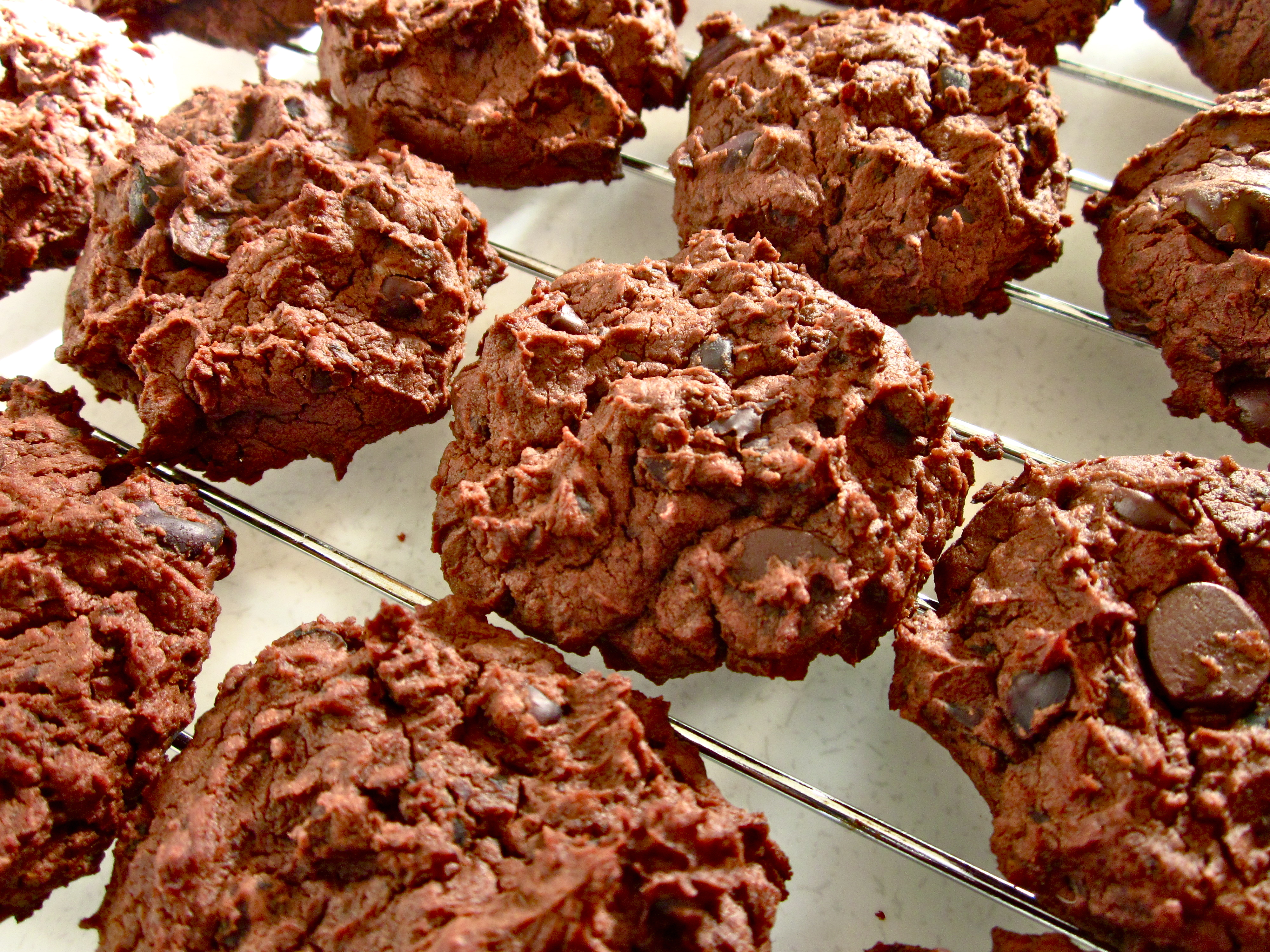 Picture of Chocolatey Peanut Butter Black Bean Cookies