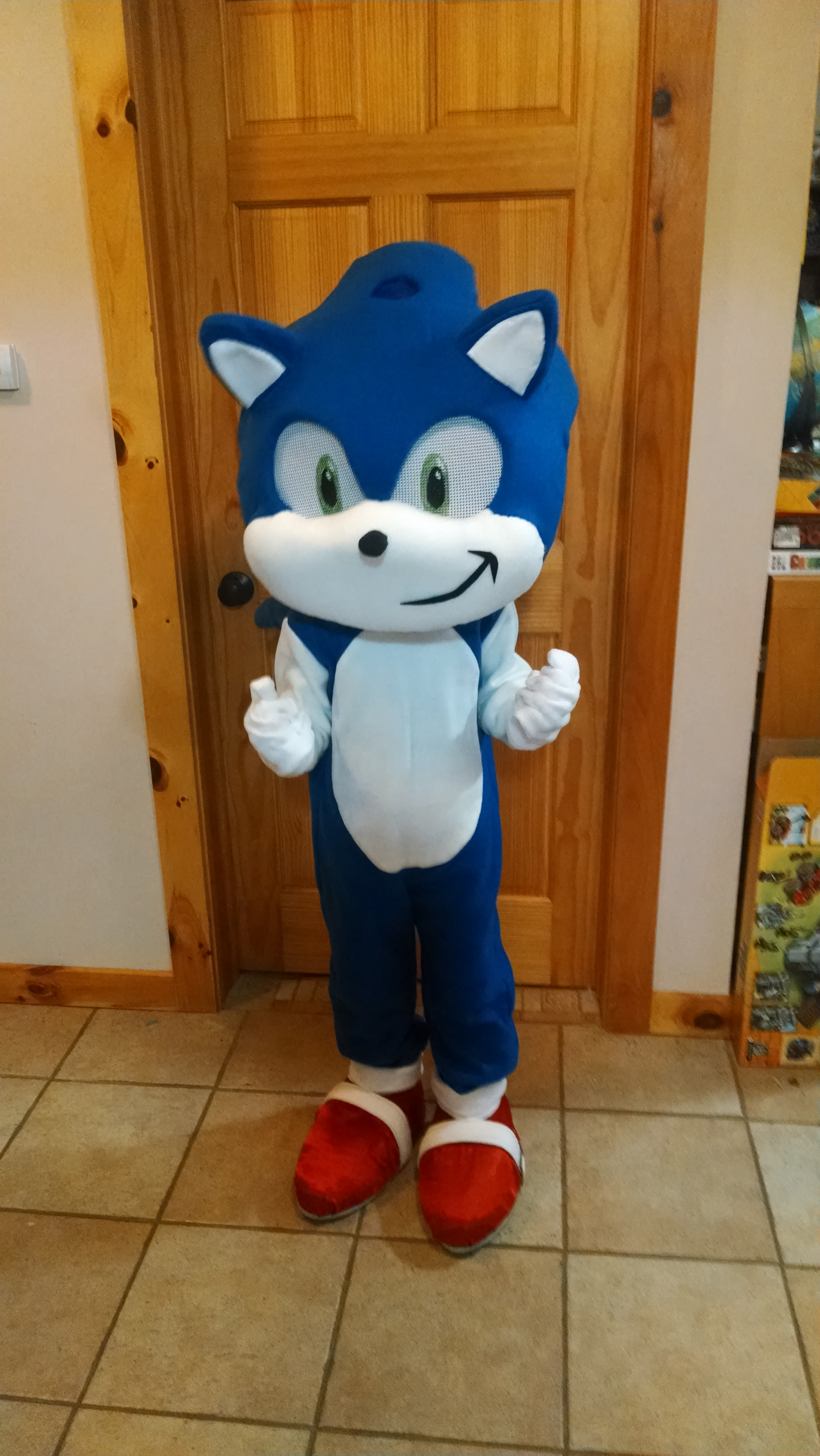 Picture of Childrens Sonic the Hedgehog Mascot Costume