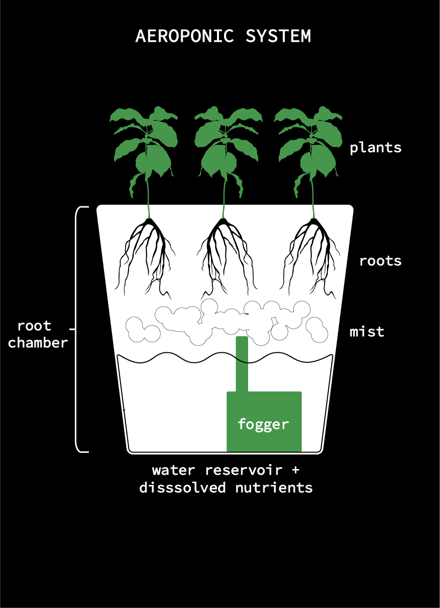 Picture of Bucket Aeroponic System
