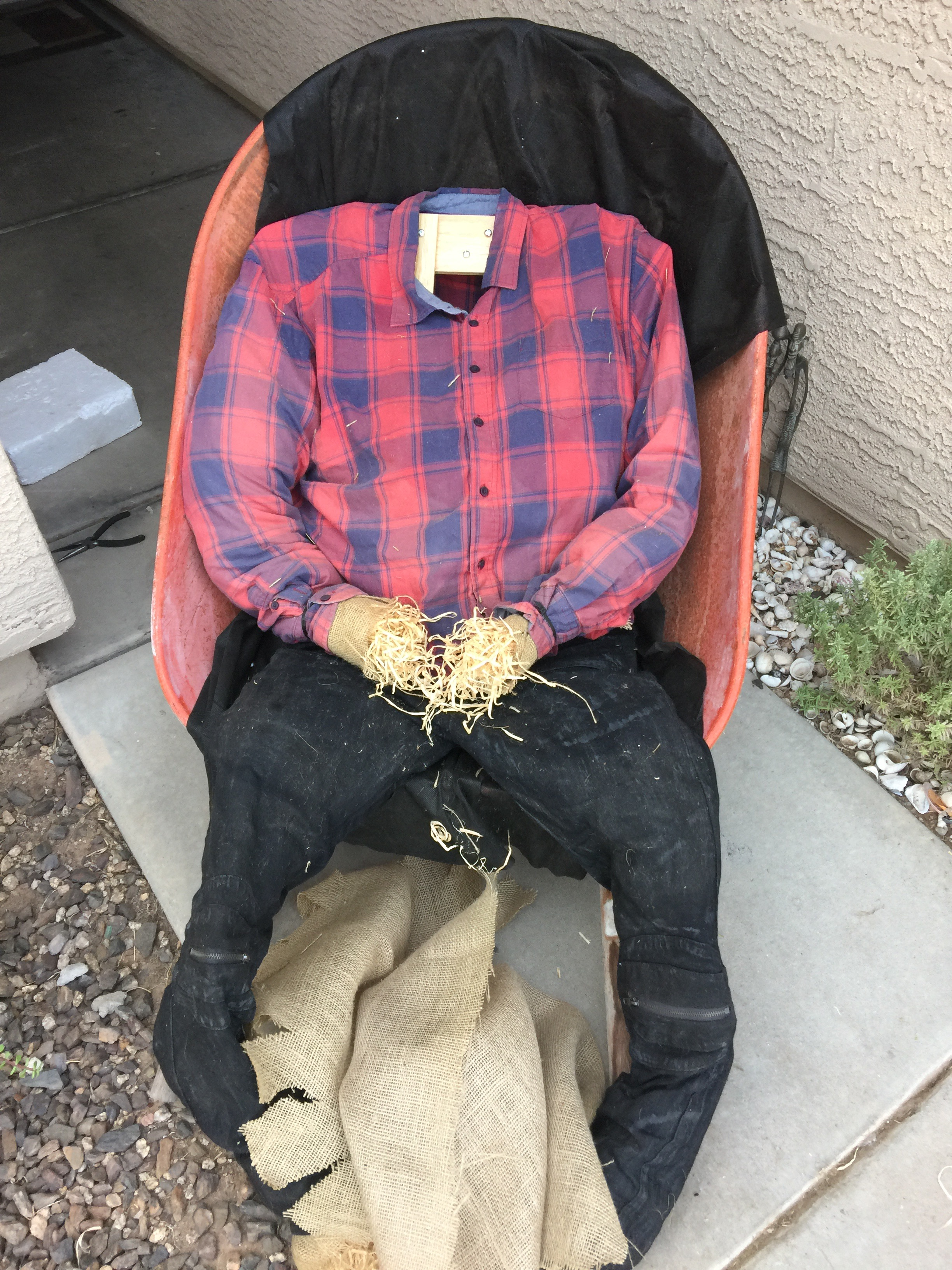 Picture of Scarecrow Body