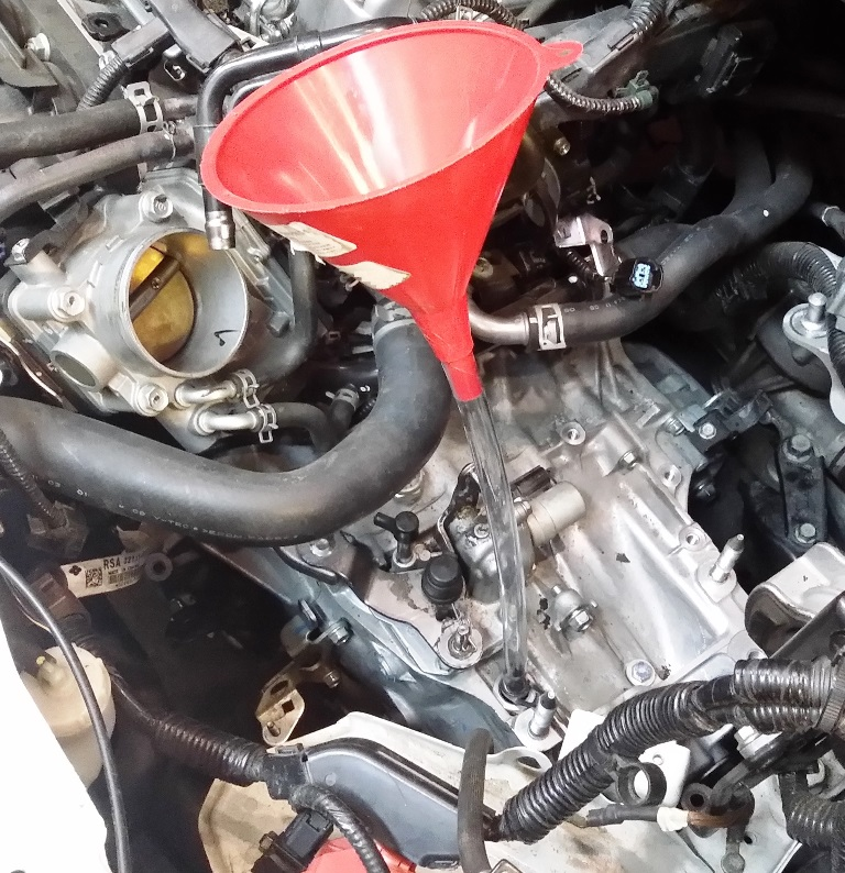Picture of Fill the Transmission With HONDA Gear Oil.