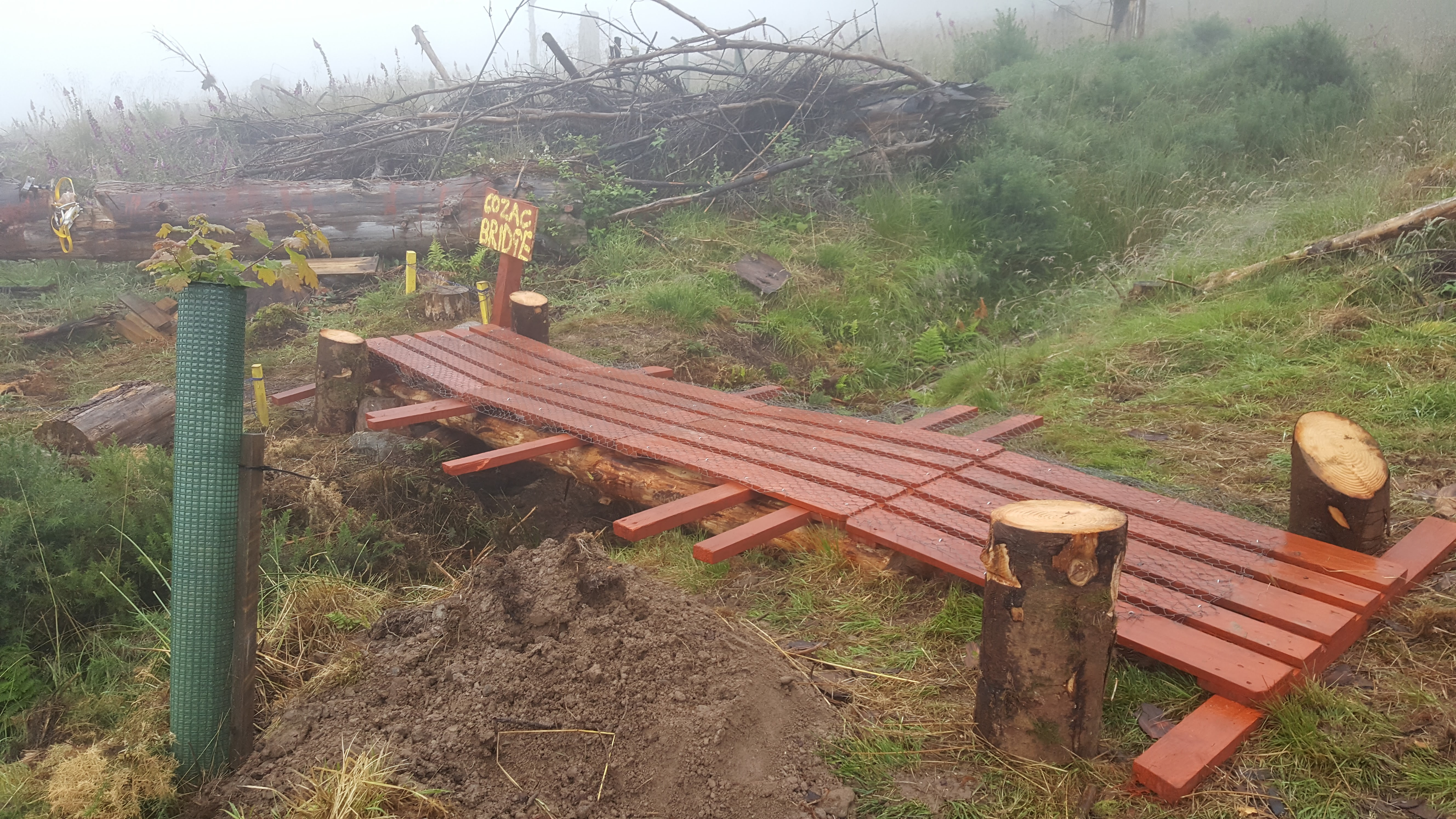 Picture of Log Pallet Bridge Introduction and Information