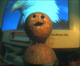 Coconut Speaker