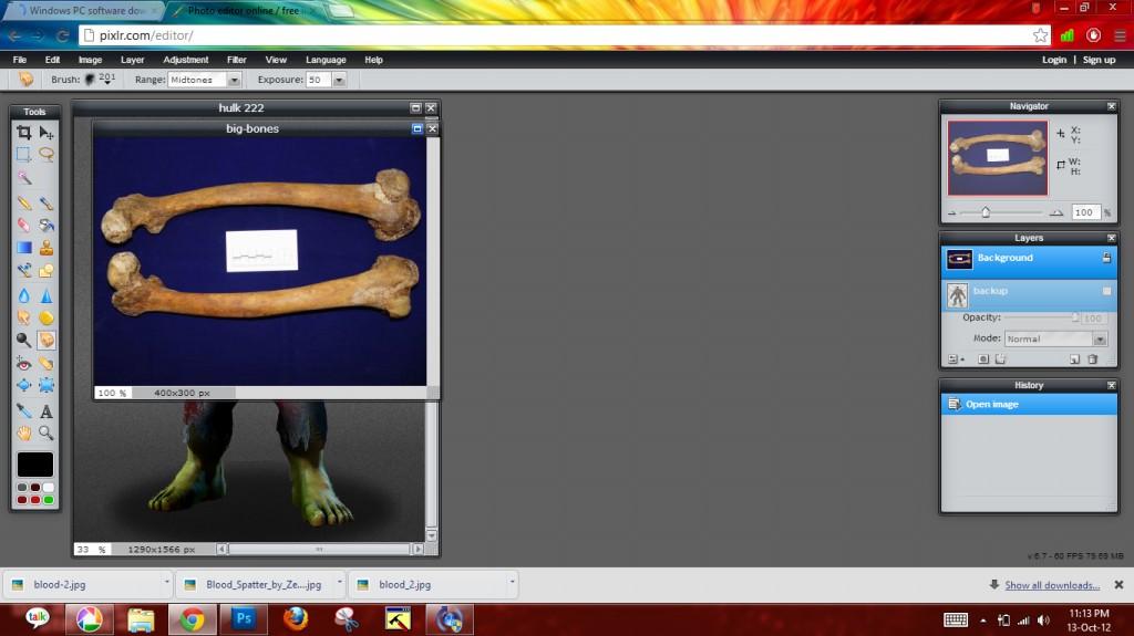 Picture of Adding Bone