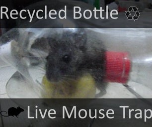 Recycled Bottle Live Mouse Trap