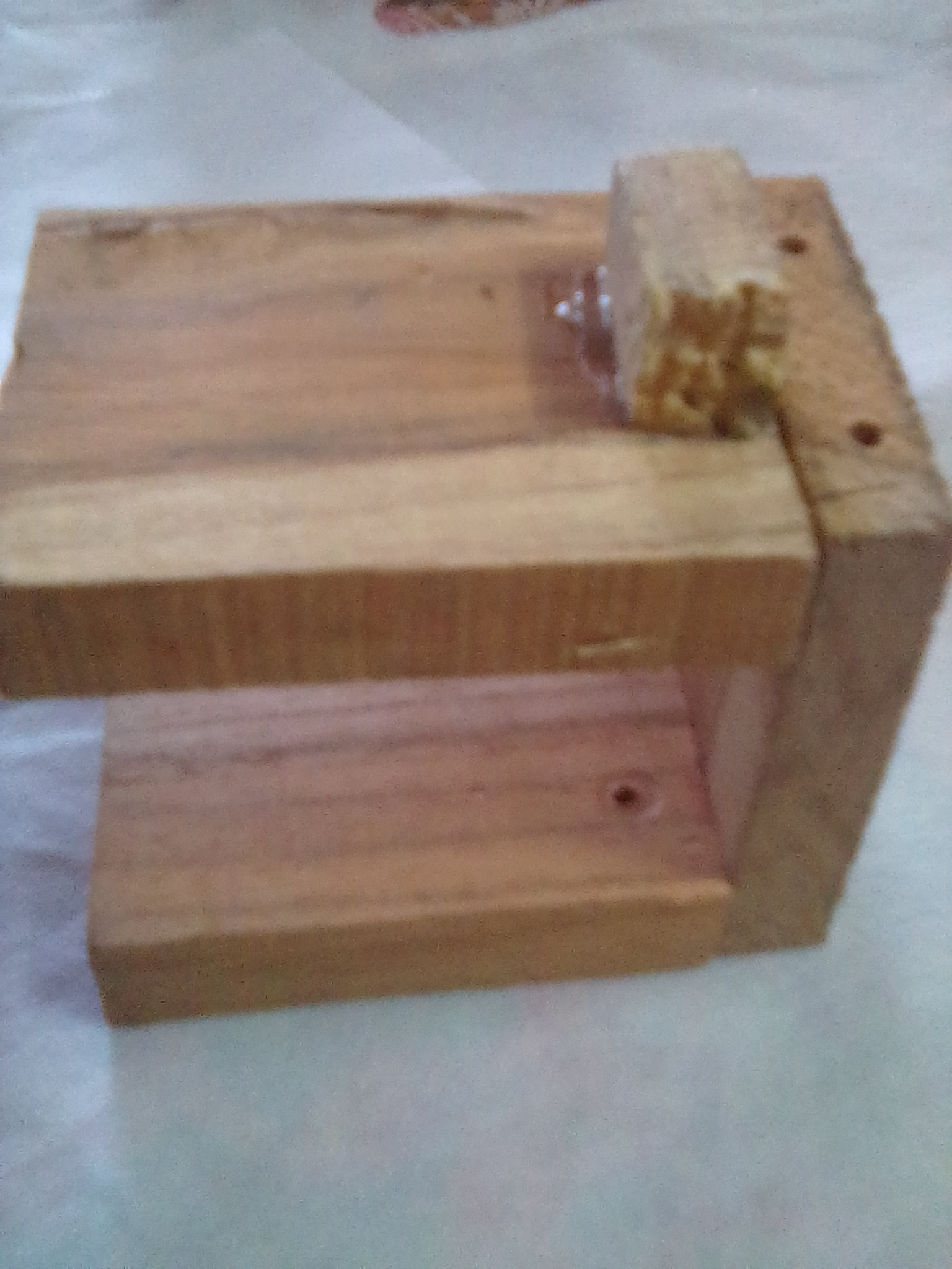 Picture of NOW WE PASTE SMALL PIECE OF WOOD.