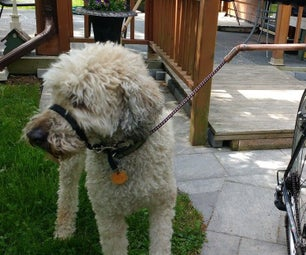 An Inexpensive and Safer Bike Doggy Walker