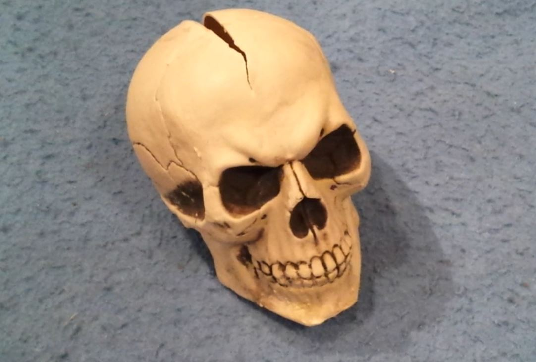 Picture of The Skull