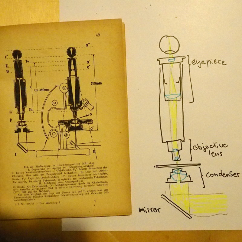 Picture of Anatomy of a Microscope