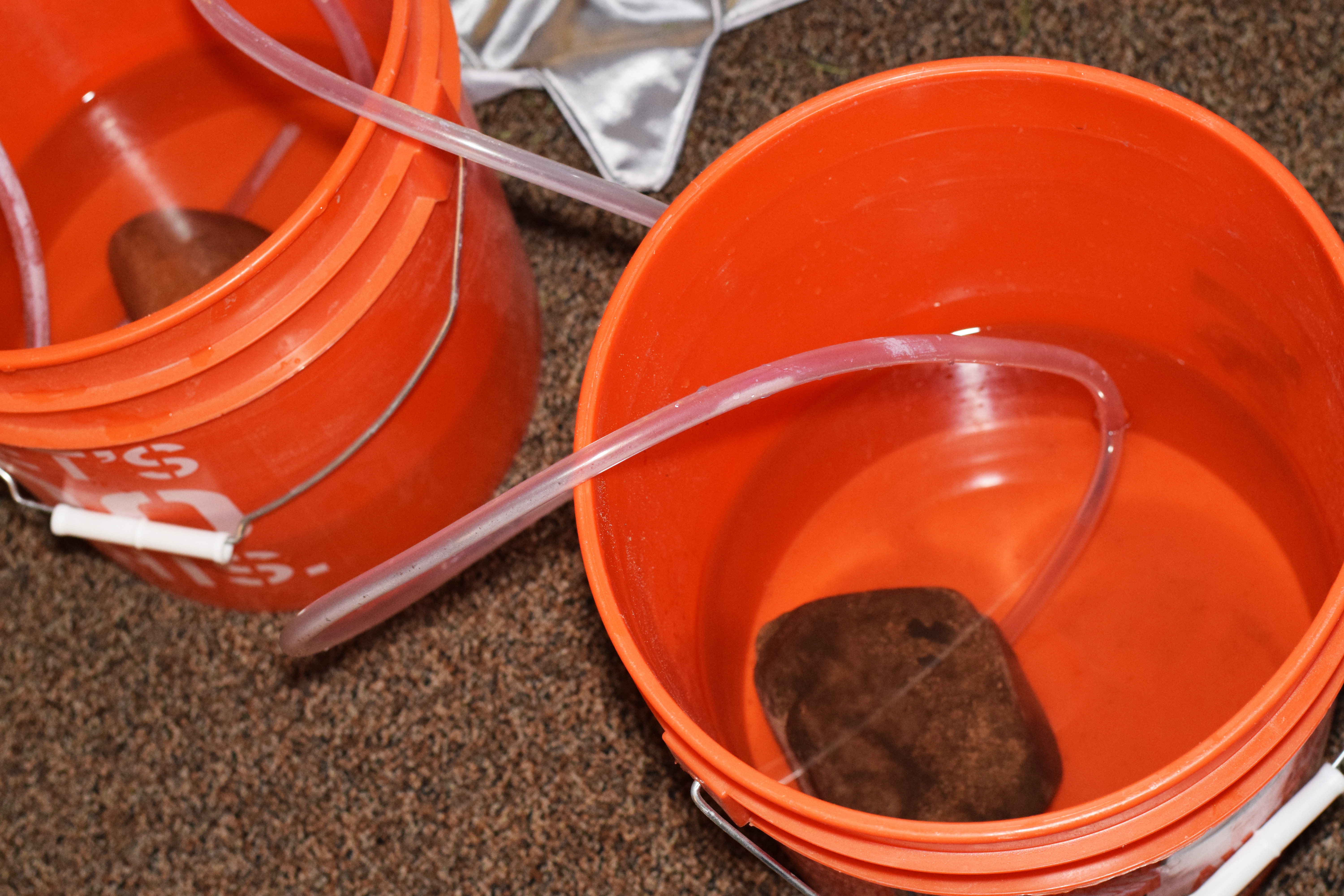 Picture of Second Bucket