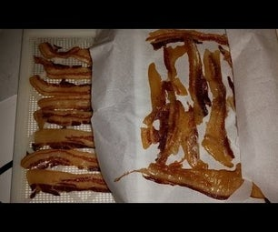 Jerkied / Candied Bacon