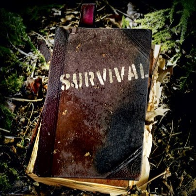 Picture of A Series of Beyond Basics in Survival: by Robby Oddo
