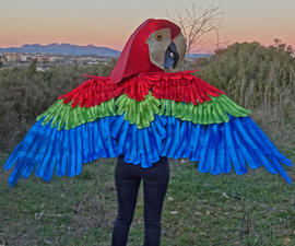 Parrot Mask and Wings