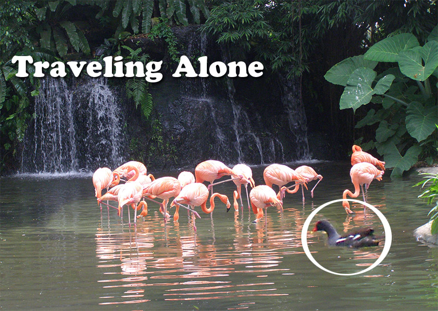 Picture of Tips for a Woman Traveling Alone