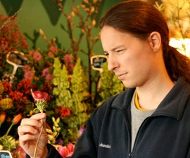 Clueless Guy's Guide to Buying Flowers