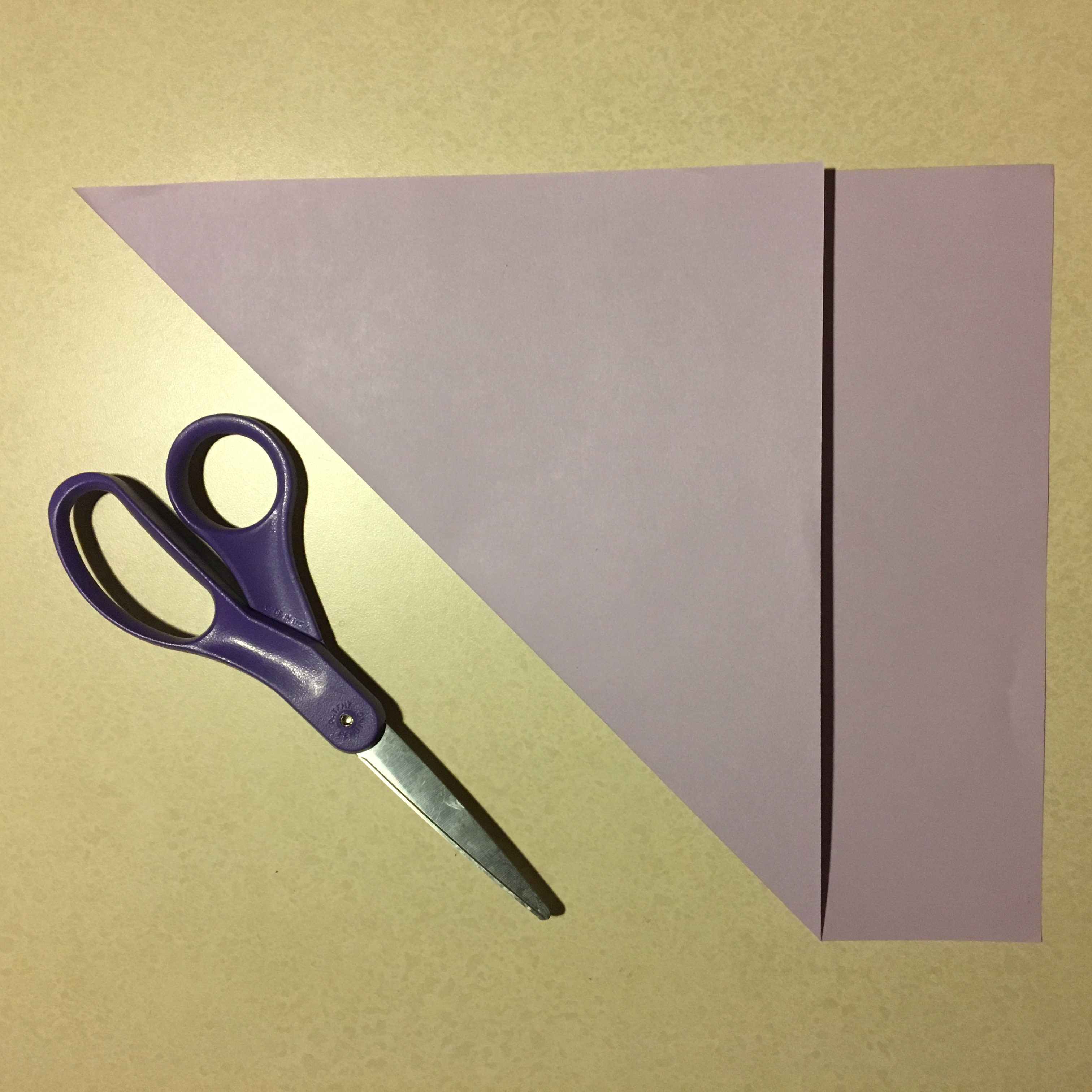 Picture of (Optional) Make a Square Piece of Paper.