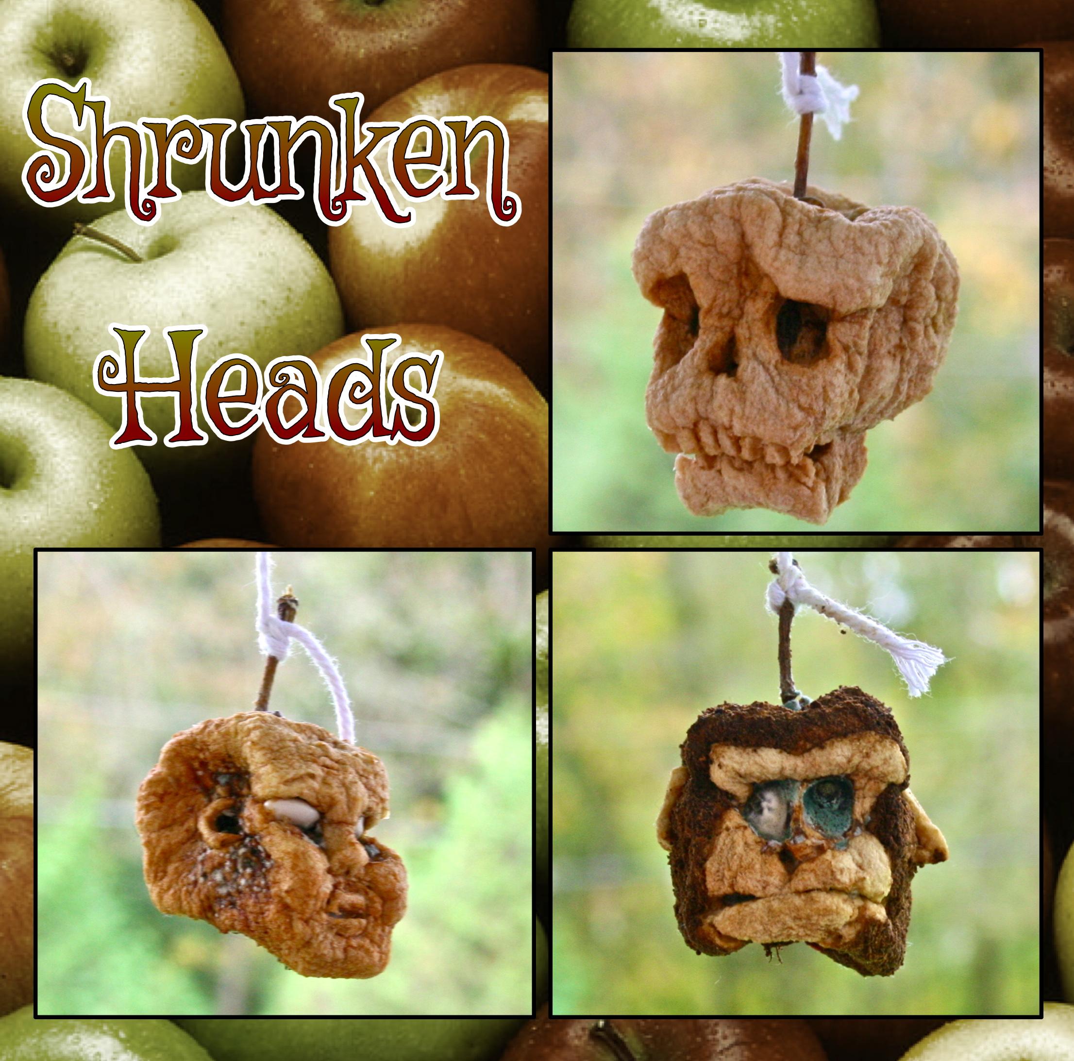 Picture of Shrunken Apple Heads