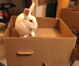 Rabbit Cottage From a Hay Box