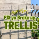 Fix a Trellis