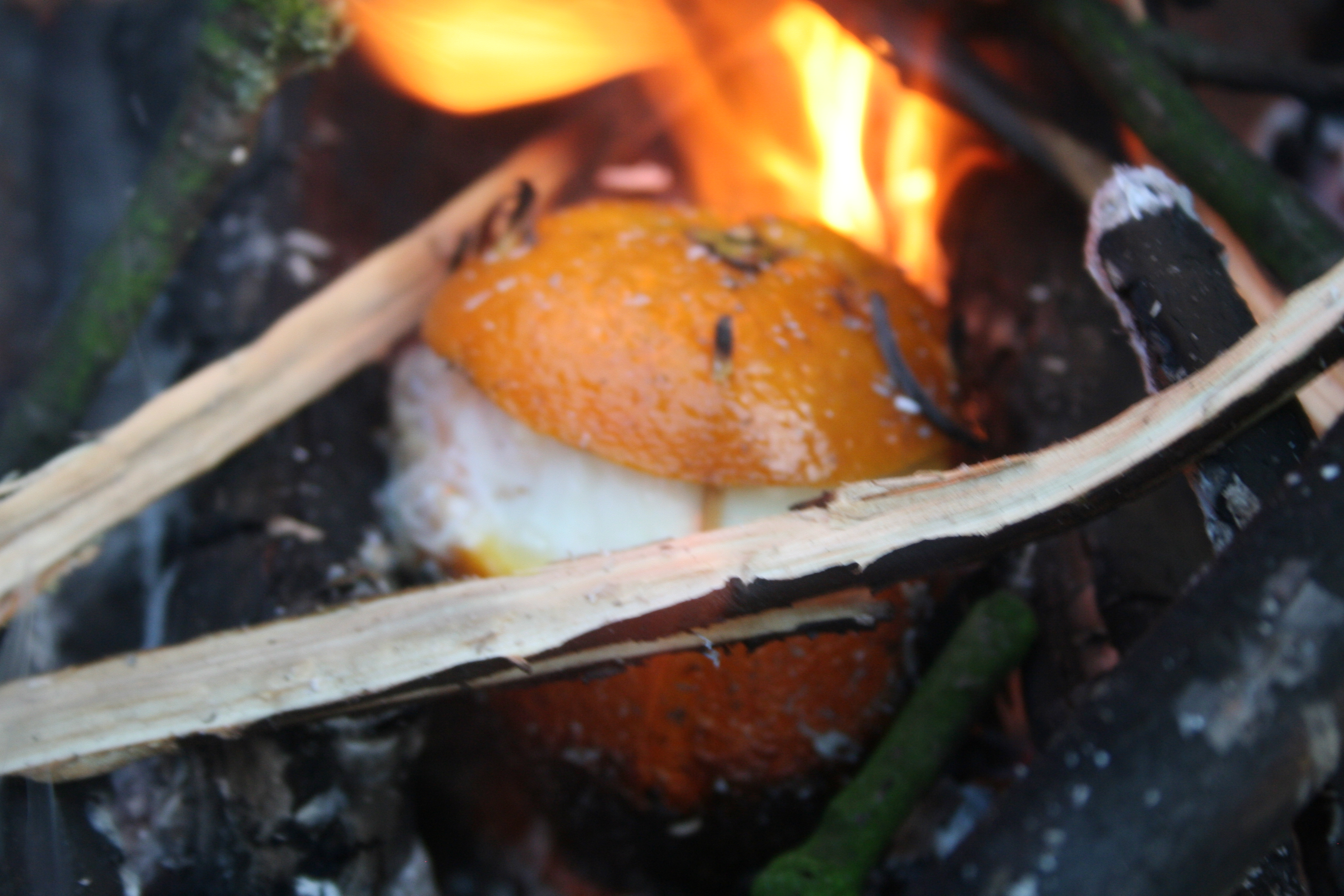 Picture of Stick It on the Fire
