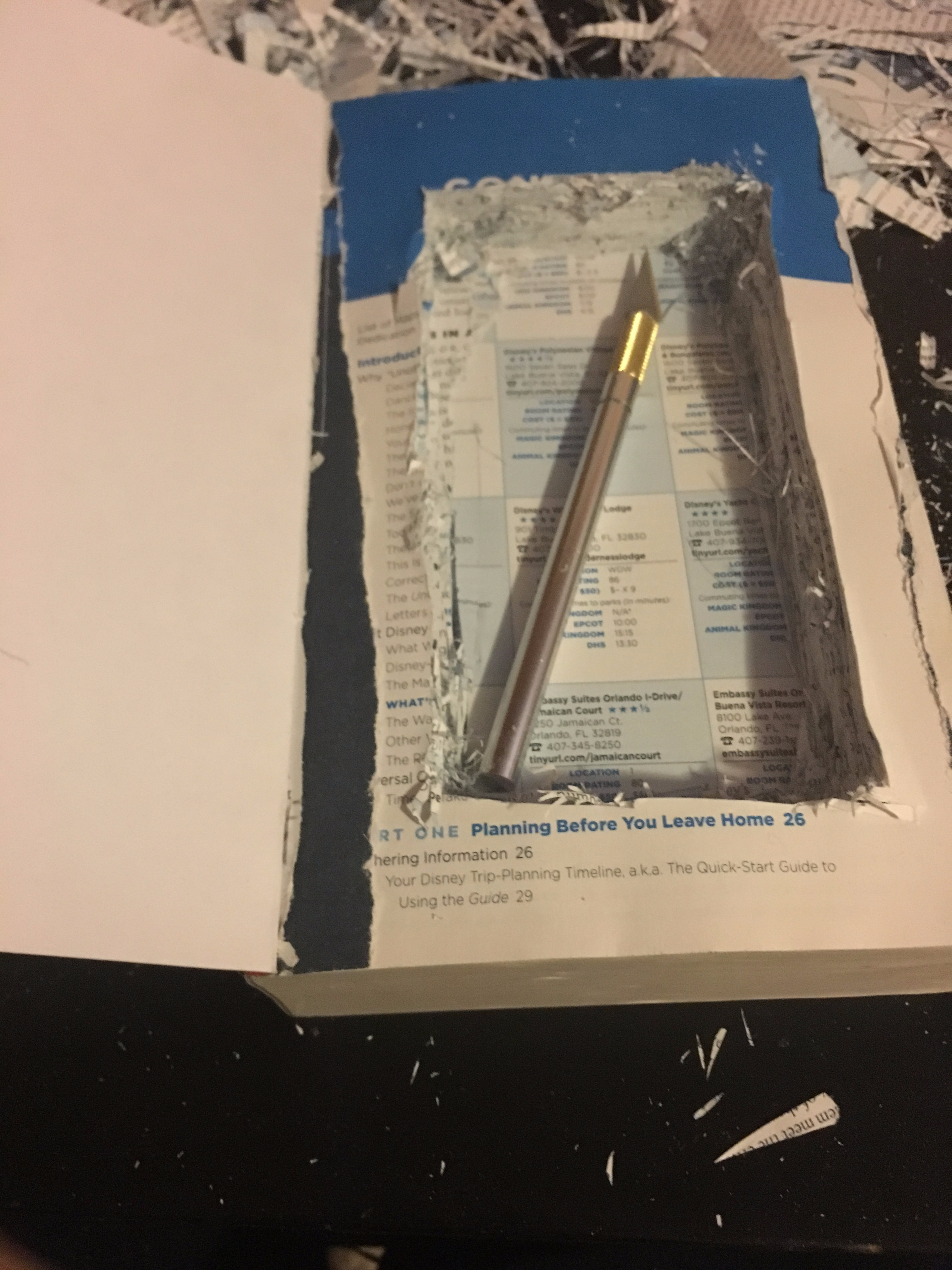 Picture of Hollowing Out the Book
