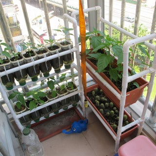 Space Efficient Gardening Rack