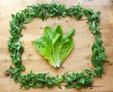 How To: Keep Greens Fresh
