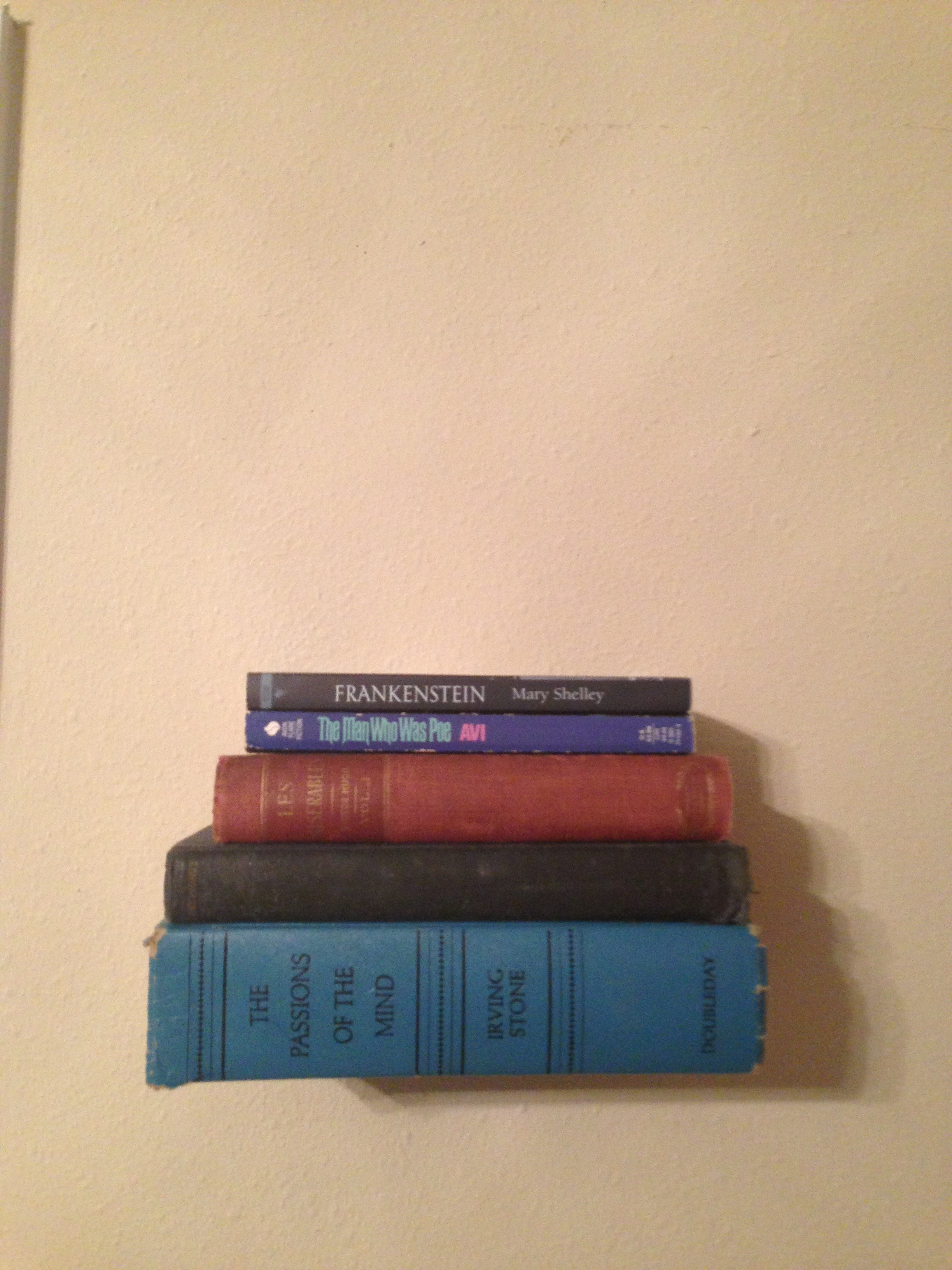 Picture of Invisible Bookshelf That Will Not Damage Your Books!