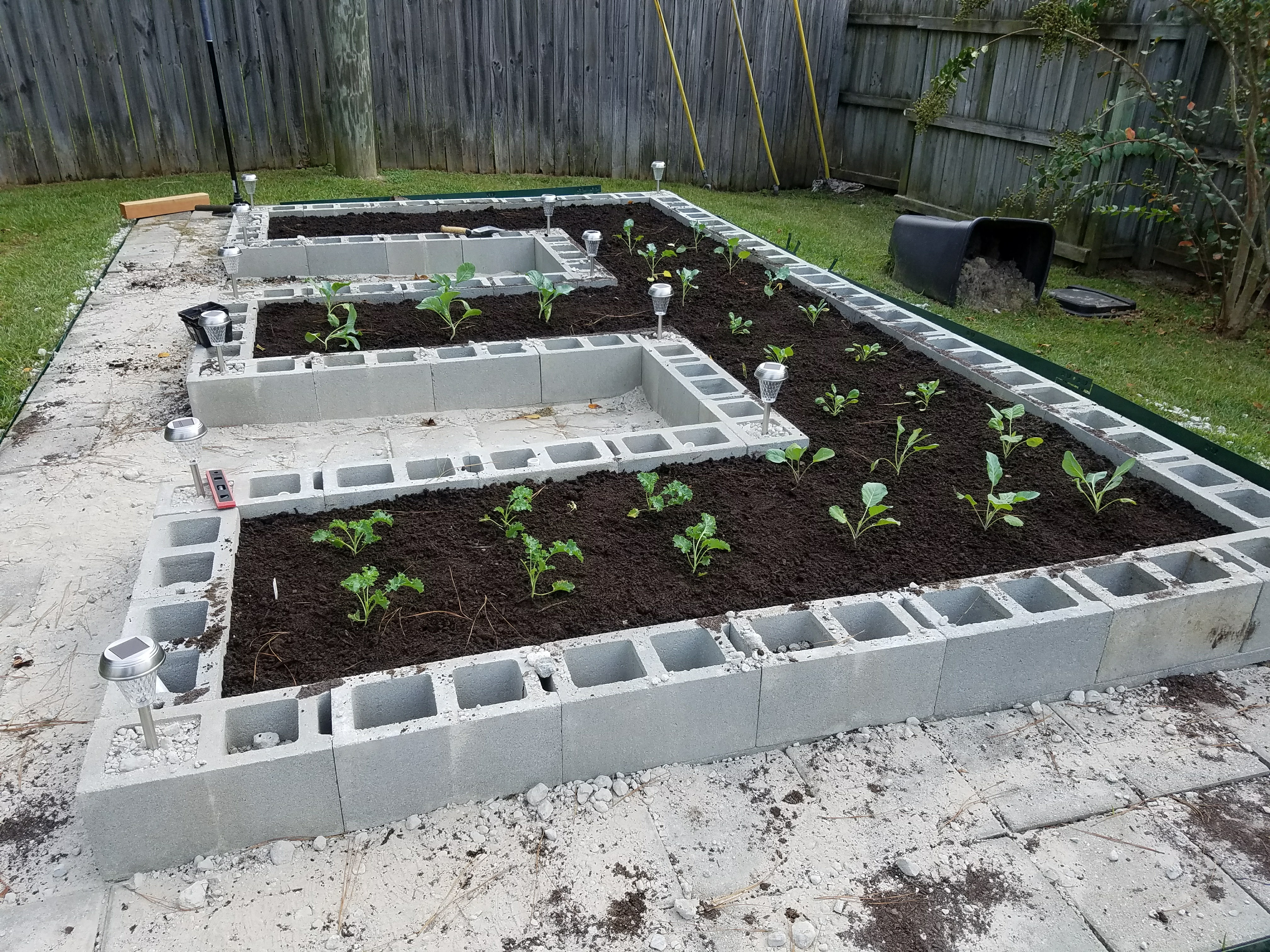 Picture of Build a Concrete Block Garden for Food and Memories