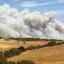 Bushfire Preparation - Simple Gutter Filler