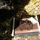 Compost Sieve