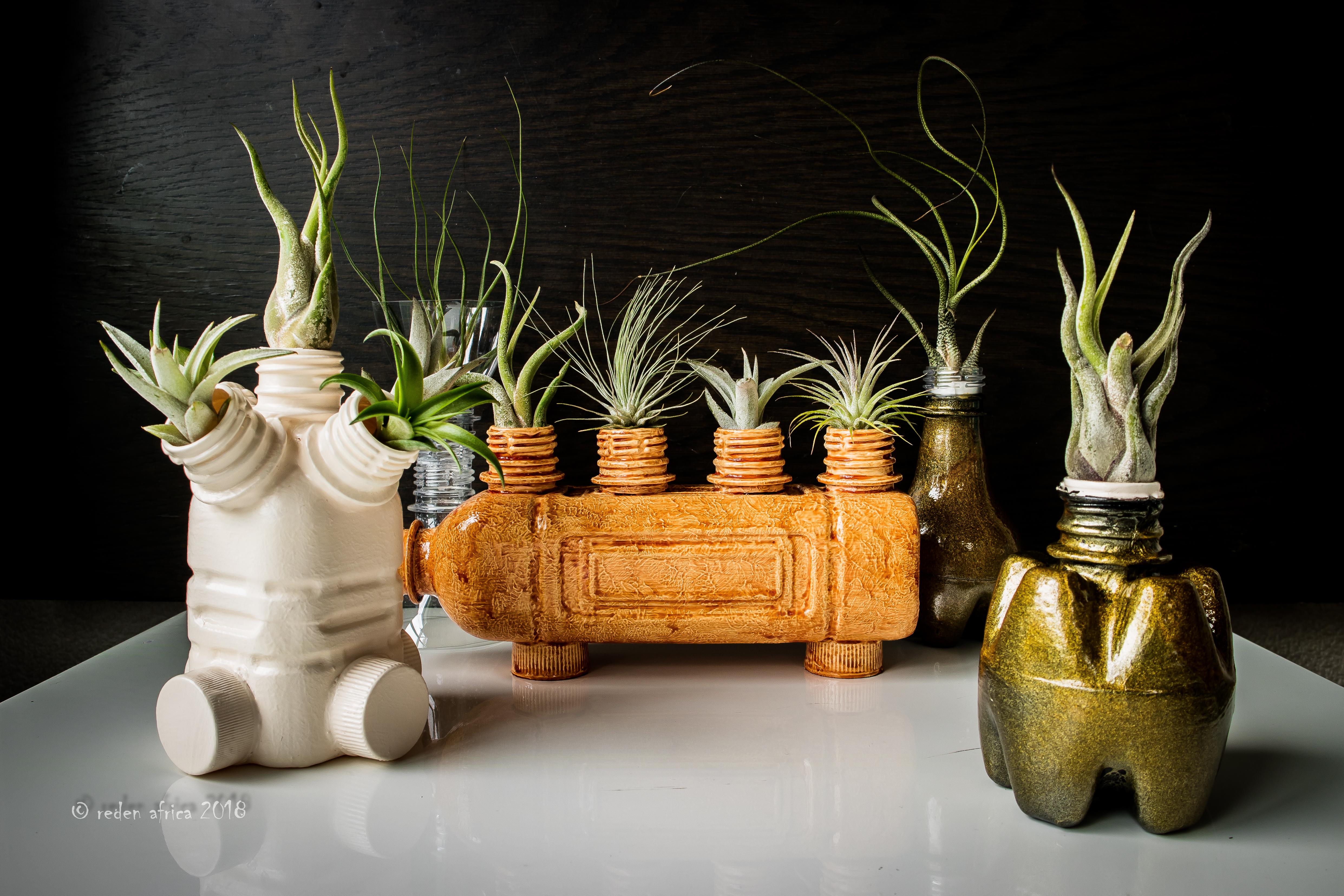 Picture of PET Bottle Planters