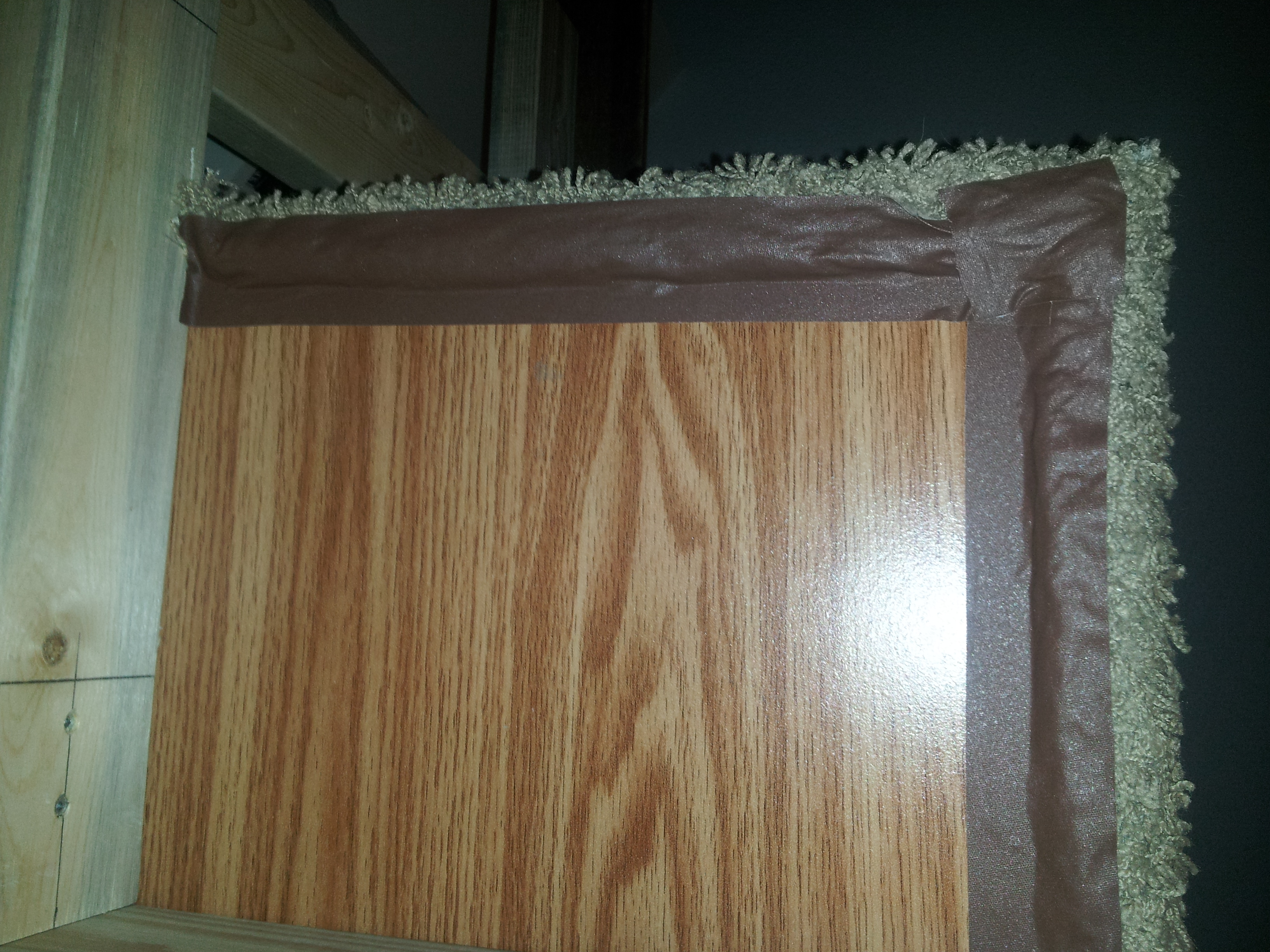 Picture of Carpeted Levels