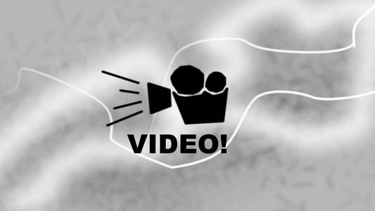 Videos!